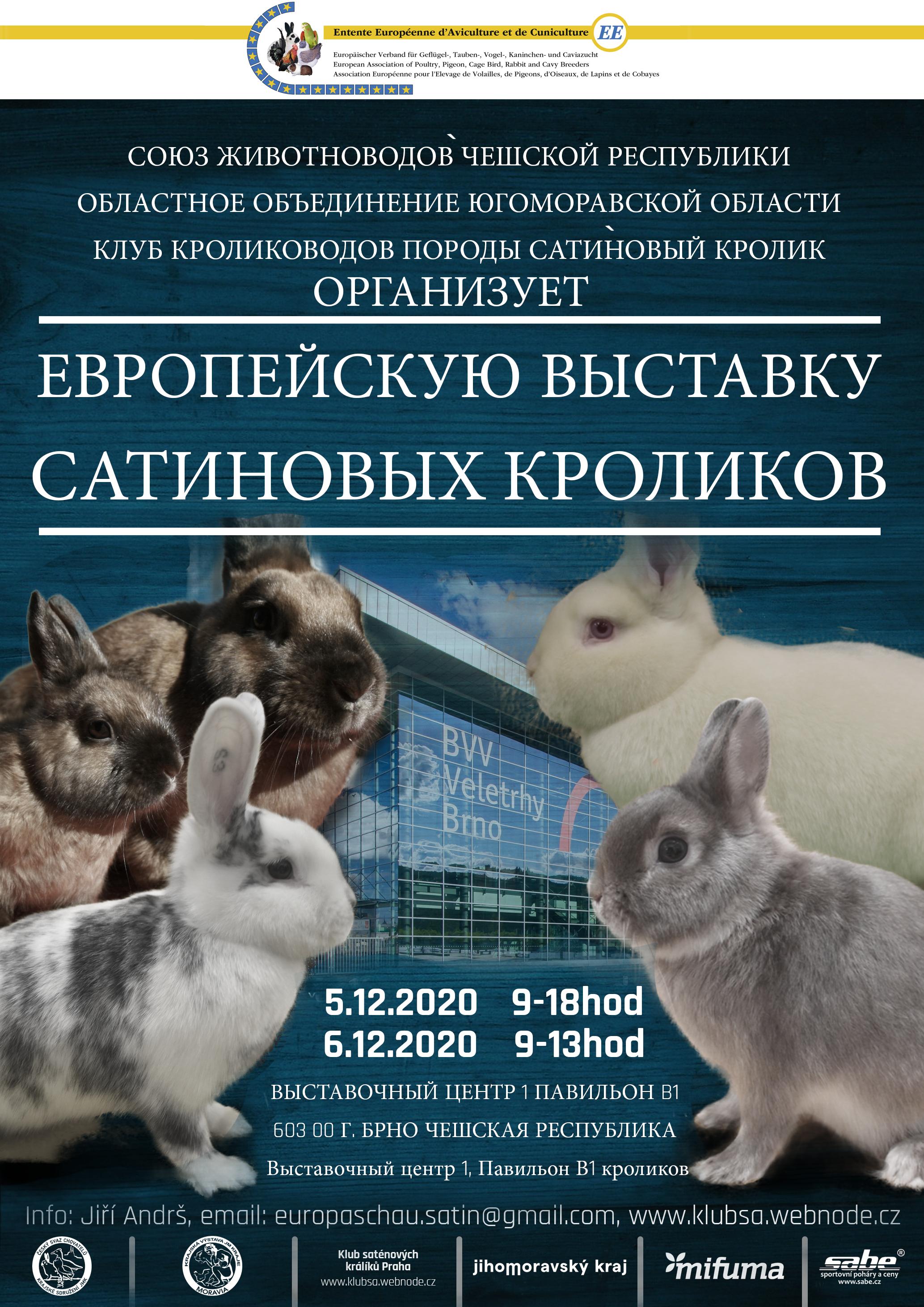 https://www.cschbohdalov.cz/europaschausatin2020/EEru.jpg